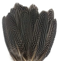 """JPSOR 20pcs 6""""-8"""" Natural Spotted Feathers for DIY Craft, Jewelry and Clothing Decoration"""
